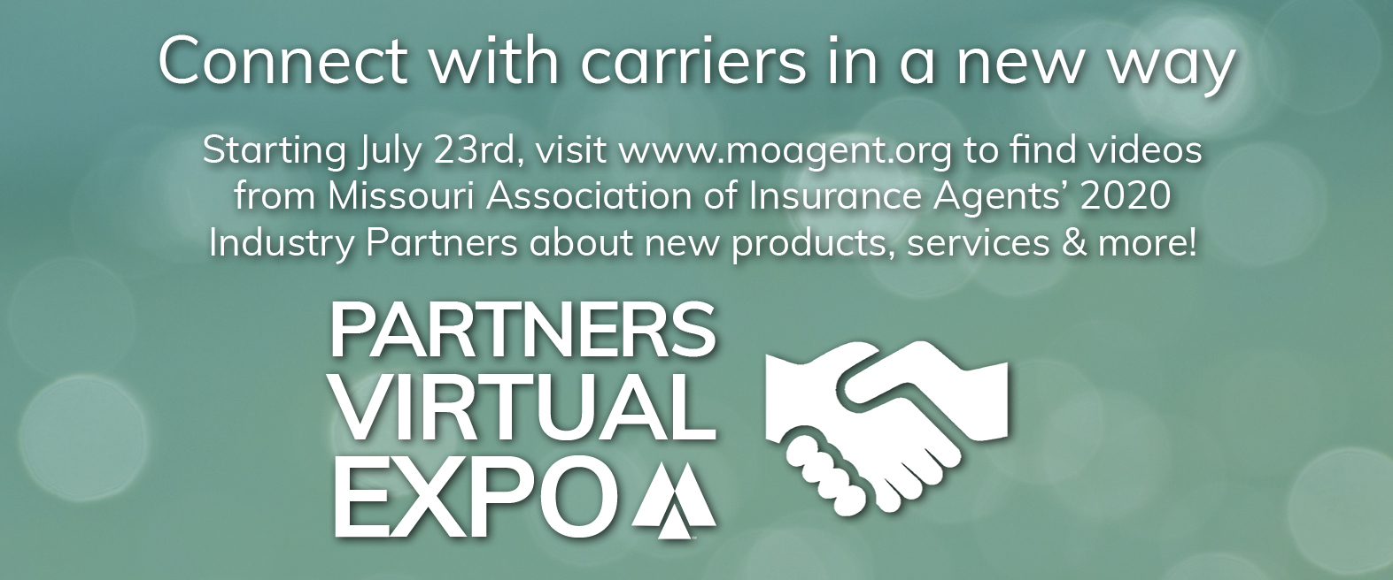 Partners Virtual Expo